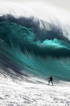 Awesome wave and awesome ride. Surf's up!