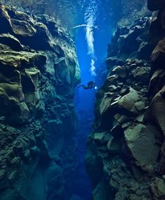 The gap between Europe and the United States is widening - by one inch a year. These spectacular underwater photographs show the vast gap between the two tectonic plates, as seen by a British scuba diver. Alex Mustard, 36, dived 80 feet into the crevice between North America and Eurasia to reveal the stunning landscape.The area - near Iceland - is riddled with faults, valleys, volcanoes and hot springs, caused by the plates pulling apart at about 1 inch per year.