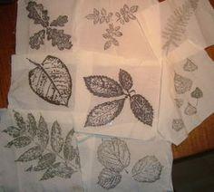 EXPERIENCE N° 2 : impression avec des plantes à tanin le 31 août 2007 Je vous présente ci-dessous une expérience très amusante et décorative, qui ne nécessite que peu de temps et de matériel. La teinture se fait à froid: pas besoin de plaques électriques...                                                                                                                                                                                 Plus