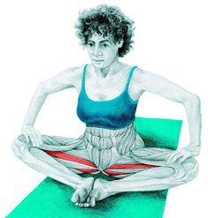 So what kind of muscles do you stretch when you do yoga? Look at these stretching exercises with pictures do find out - Vicky Tomin is a Yoga exercise Yoga Zen, Yoga Meditation, Muscle Stretches, Stretching Exercises, Butterfly Pose, Butterfly Stretch, Massage Therapy, How To Do Yoga, Excercise