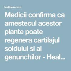 Medicii confirma ca amestecul acestor plante poate regenera cartilajul soldului si al genunchilor - Healthy Zone Health And Wellness, Health Fitness, Metabolism, Good To Know, Diy And Crafts, Medicine, Healthy, Pixi, Apothecary