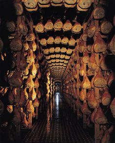 Travel Emilia Romagna | [Tutto il gusto dell'Emilia Romagna] Viaggiando per la Food Valley da Piacenza a Parma