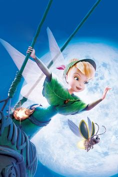 Tinkerbell And Friends, Tinkerbell Disney, Peter Pan And Tinkerbell, Tinkerbell Fairies, Fantasia Disney, Disney Fairies, Walt Disney, Disney Love, Disney Magic