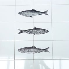 Tile It Yourself Tableau 1-2-3 Fish!