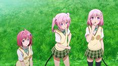 Anime Figures, Anime Characters, Motto To Love Ru, To Love Ru Darkness, Best Waifu, Geek Out, Light Novel, Godzilla, Kawaii Anime