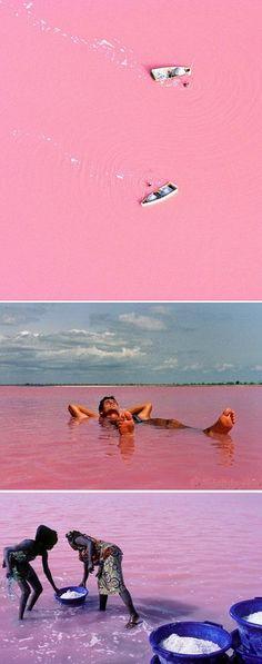 Strawberry-Milkshake Coloured Lake|Lake Retba or Lac Rose lies north of the Cap Vert peninsula of Senegal, north east of Dakar.