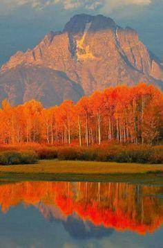 Colores del otoño en Grand Tetons, Wyoming, Estados Unidos.
