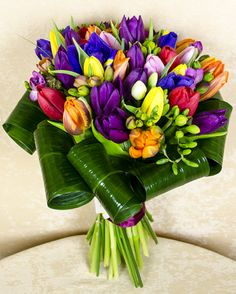The Motans ( Christmas Aesthetic, Flower Power, Magnolia, Tulips, Wedding Bouquets, Floral Arrangements, Champagne, Iris, Table Decorations