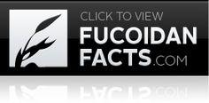 www.fucoidanfacts.com  great read!  www.oswalt0315.iamlimu.com