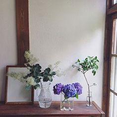 女性で、Otherの、Entrance/ガラス/DIY/古道具/フラワーベース/ガラス瓶/下駄箱/ヴィンテージ/花のある暮らし/古民家系についてのインテリア実例。 「スモークツリーと 紫...」 (2017-07-18 10:23:10に共有されました) Flower Vases, Flower Arrangements, Interior And Exterior, Interior Design, Relaxation Room, Indoor Flowers, Flower Fashion, Green Flowers, Ikebana