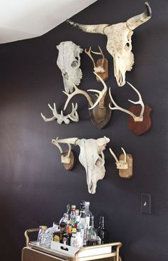 cool! love the mix of skulls and antlers.