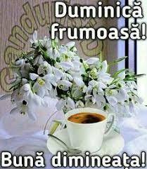 Imagini pentru buna dimineata duminica Good Morning, Ecards, Manual, Faith, Smileys, Photos, Buen Dia, E Cards, Bonjour