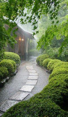 Jardin Japonais Erable du Japon Bambous & fougères  Jardins japonais ...