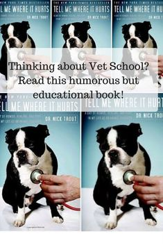 #ad Amazing book to get you started on your journey into Vet school! Pre Vet. Veterinarian. Books by Veterinarians. Vet School Tips. Vet Students.