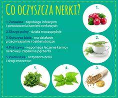 Detox, Health And Beauty, Food, Essen, Meals, Yemek, Eten