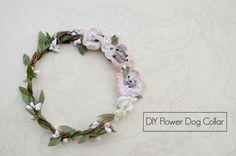 DIY Flower Dog Collar for a Wedding