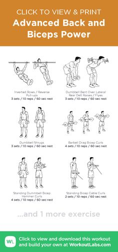 Advanced Back and Biceps Power · WorkoutLabs Fit Biceps Workout Chart, Mens Bicep Workout, Bi Workout, Back And Bicep Workout, Gym Workout Chart, Back And Biceps, Free Workout, Gym Workouts For Men, Fun Workouts