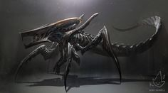 ArtStation - Xenomorph + Starship Troopers Warrior Bug, Kory Hubbell
