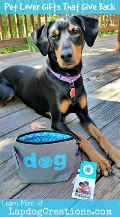 Penny loves PawZaar and their gifts for pet lovers #GiftsThatGiveBack ©LapdogCreations #sponsored:
