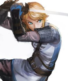 The Legend of Zelda series and Hyrule Warriors, Link / Shogunofyellowblr on Tumblr / Work by cocacolllllllla on Twitter