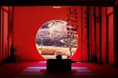 鎌倉 明月院 - Google 検索