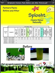 Cleaning lake over 5 weeks Fish Tanks, Before And After Pictures, Ponds, Farmer, Periodic Table, Cleaning, Nature, Periodic Table Chart, Naturaleza