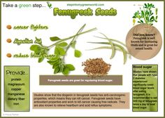 ☛ Do you eat Fenugreek?  Do you know Fenugreek seeds can  help with fever and eases flu symptoms?  Fenugreek seeds have traditionally been used to reduce fever and relieve flu symptoms.   ✒ Share | Like | Re-pin | Comment