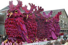 zundert flower parade - Google Search
