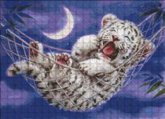 Mini Hammock White Tiger_1.jpg (600×437)