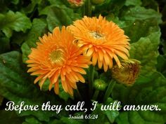 I will answer them before they even call to me.  While they are still talking to me about their needs, I will go ahead and answer their prayers!  Isaiah 65:24 NLT