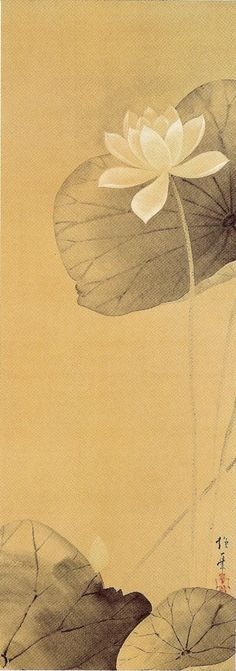 The White Lotus 白蓮圖,                  Sakai Hoitsu(酒井抱一 1761-1828) Edo Period(19th Centry)
