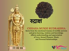 6 Mukhi Rudraksha keeps a person mentally strong which offer improved will power, expression power and learning power. Vedic Mantras, Spiritual Images, Beads Online, Mentally Strong, Shiva Shakti, Personal Relationship, Lord Shiva, Tantra, Hinduism
