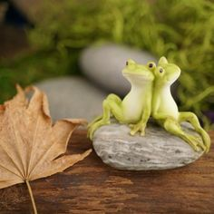 2-034-Frog-Friends-on-Stone-Fairy-Garden-Terrarium-Dollhouse-Miniature-Small-Animal