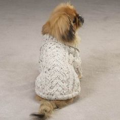 6 Free Dog Coat Knitting Patterns - Keep your dog Warm and Cozy with a New Coat!