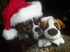 happy holidays to all world pinterest