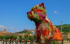 Die Blumenskulptur Puppy in Bilbao stellt einen jungen Hund dar