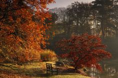 (PHOTO: National Trust/Andrew Butler)  Britain's best autumn walks:  Sheffield…