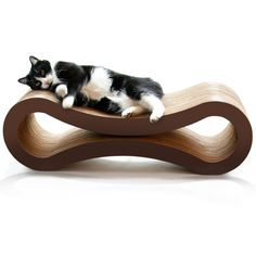 momento OMG do dia - PetFusion Cat Scratcher Lounge