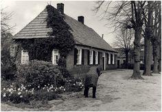 Luyksgestel, Dorpstraat - Auteur: RHCe : Stawinski, P. - 1983