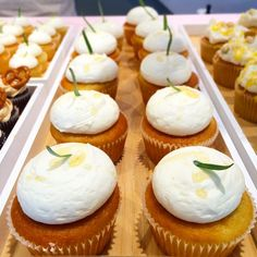 Pretend you are on a Greek Island with these chubby little Honey, Rosemary & Yoghurt cupcakes. Perfect on a sunny day like this! ☀️ #cndsoho