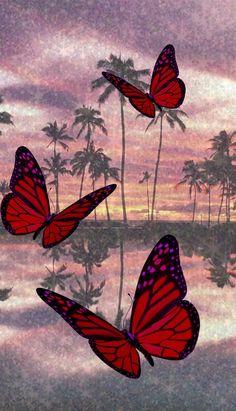 Pastel Iphone Wallpaper, Iphone Wallpaper Images, Butterfly Wallpaper Iphone, Disney Phone Wallpaper, Homescreen Wallpaper, Iphone Wallpaper Tumblr Aesthetic, Iphone Background Wallpaper, Aesthetic Pastel Wallpaper, Animal Wallpaper