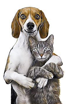 Dog Cat Pets - Free image on Pixabay Free Pictures, Free Images, Love Hug, Friends In Love, Dog Cat, Lion Sculpture, Statue, Pets, Animals