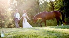 horse wedding photos,but instead of horse , use Ayden