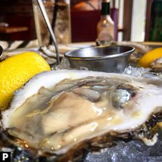 Celebrating #NationalOysterDay! BLUEPOINT OYSTERS | Lemon, Cocktail Sauce | LA PULPERIA | Upper East Side, NYC