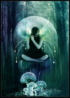 Music fairy