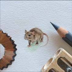 Who knew you could make a mouse even smaller? Art for Ants by Lorraine Loots