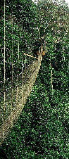 Ghana nature!