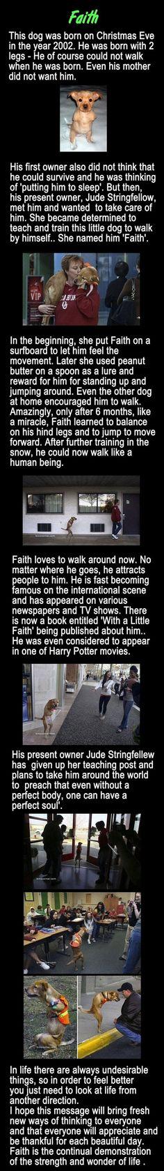 Meet Faith.