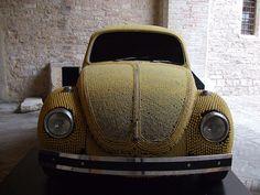 Pasta Bug...