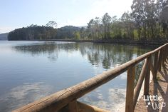 del Parque Natural de Doñana. Se trata de las salinas de Ulló en Vilaboa.